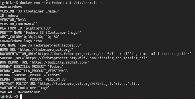 Docker run fedora.png